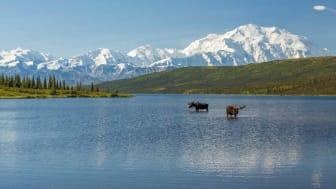 picture of Alaska wilderness