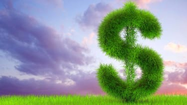 dollar sign growing out of grass