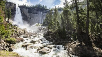 In late winter Nevada Falls is in full flow and the water thunders off the cliff face and takes up again in the merced river as it passes rocks and fir trees.
