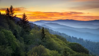 picture of Smoky Mountains in Tennessee