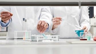 Scientists perform experiments