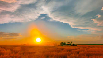 Combines at work at sunset during the wheat harvest, Shields & Sons Farming in Goodland, Kansas