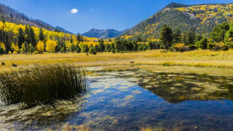 A pond and pasture beneath the mountains of Arizona