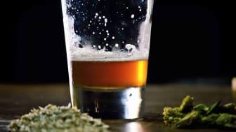 Concept art of a marijuana drink