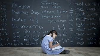 A grade school student writes beneath a giant chalkboard