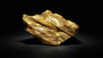 Photo of a giant gold nugget