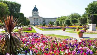 Saskatchewan Canada, flowers