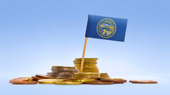 picture of Nebraska flag in coins