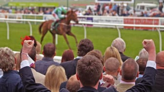 picture of cheering crowds watching a horse race