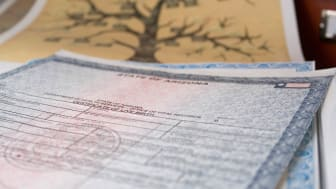 State of Arizona birth certificate and family tree