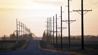utility poles running along road