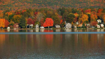 Trees as the leaves turn in the fall by a body of water