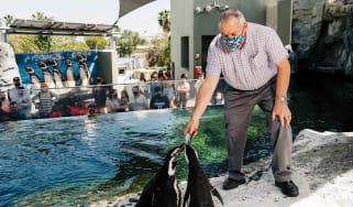 John Rouse feeding penguin at the Aquarium of the Pacific