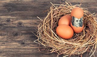 A birds nest with eggs. One egg is cracked and a $100 bill is coming out.