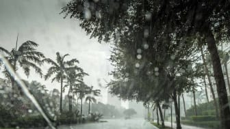 A hurricane does its damage to a Florida community
