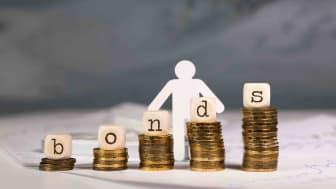 Vanguard Total Bond Market Index Fund Admiral Shares