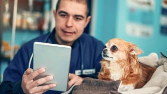 A man and a dog look at a tablet