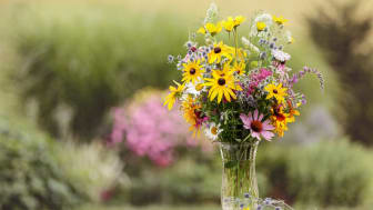 A bouquet of wildflowers in a clear vase in a garden