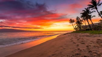 A Hawaiian beach at sunset