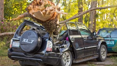 Photo of a tree on a car
