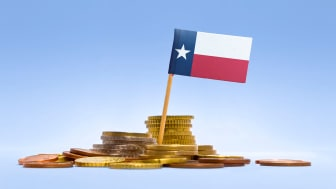 picture of Texas flag in coins
