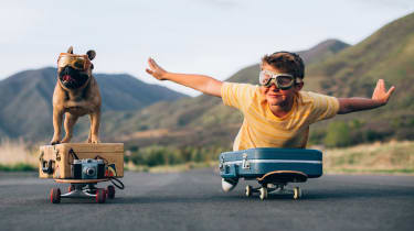 A boy and his dog ride skateboards side-by-side.