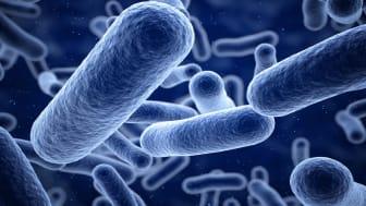 3d render Bacteria blue closeup (depthof field)