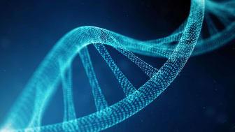 binary genome concept