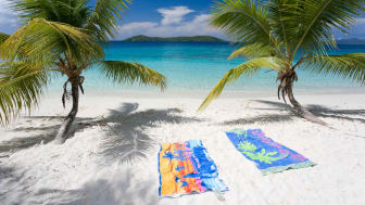 Tropical seascape beach with two palm trees in tropical paradise, beach towels