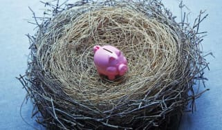 A tiny pink piggy bank sits in the middle of a bird's nest that suggests an insufficient nest egg.