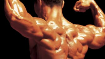 picture of a bodybuilder's back while he is flexing his muscles