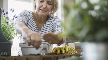 Woman planting seeds