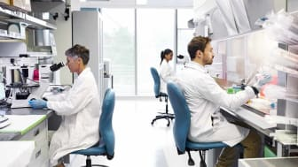 Male and female healthcare workers working in laboratory. Scientists are conducting medical research. They are working in hospital.