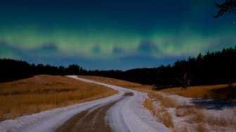A road and the aurora borealis in Minnesota