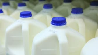 Gallon containers of milk