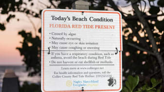 A Florida beach sign warns of red tide