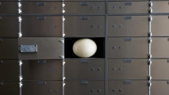 An open safe deposit box with an egg in it.