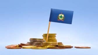 picture of Vermont flag in coins