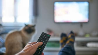 photo of person watching TV holding remote