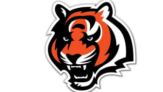 picture of Cincinnati Bengals logo