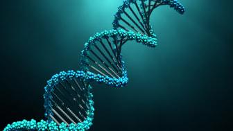 3d illustration DNA molecules