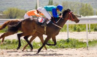 A jockey and horse win a race.