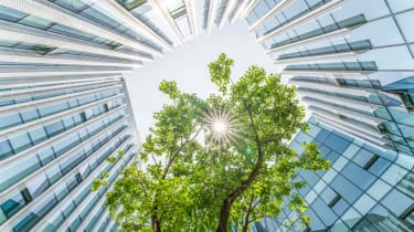 A tree is surrounded by an office building.