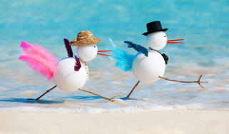 picture of snowbird dolls on a beach