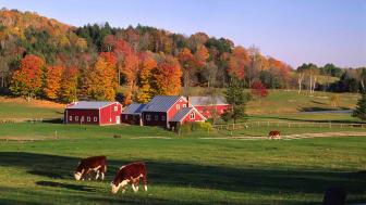 Vermont farm scene in fall