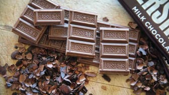 A few bites of a Hershey's chocolate bar sit atop crudely cut chocolate nibs atop a wooden board