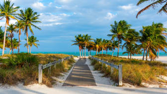 picture of a path to a Florida beach