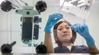Japanese female technician examines a blood sample in an Argentine clinical analysis laboratory.