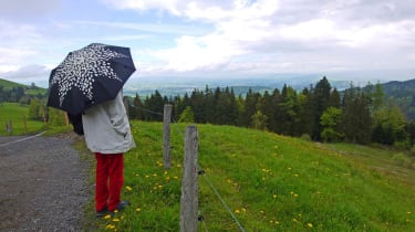 A woman stands under an umbrella on a country road.