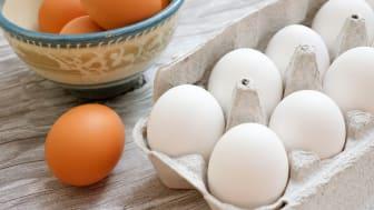 A carton of white eggs next to some brown eggs
